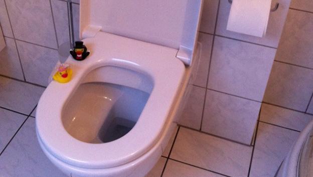 comment nettoyer un wc trs entartr fabulous toilettes. Black Bedroom Furniture Sets. Home Design Ideas